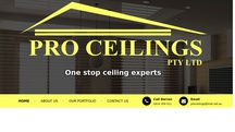 Professional Ceiling Services